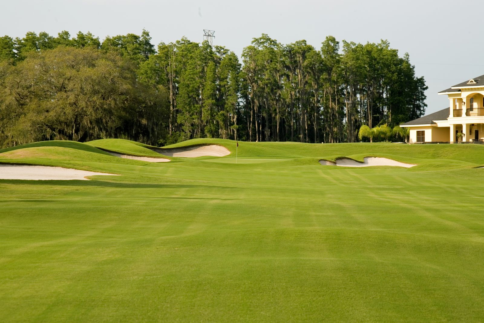 Golf Courses Tarpon Springs, Pinellas County, Fl